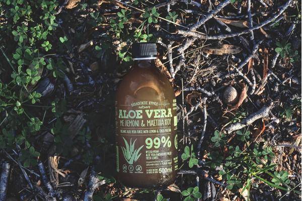 Natuevo Aloe Vera Farm!